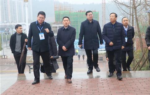 市委常委、常务副市长王善平来巴中棠外调研